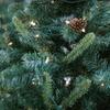 53% Off 6'-8' Fraser Fir Christmas Tree