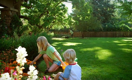 Clean Air Lawn Care - Clean Air Lawn Care in