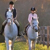 Up to 56% Off Horseback-Riding Lessons in Eads