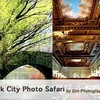 New York City Photo Safari - New York City: $40 for Nuts & Bolts Intermediate Photo Class with New York City Photo Safari ($80 Value)