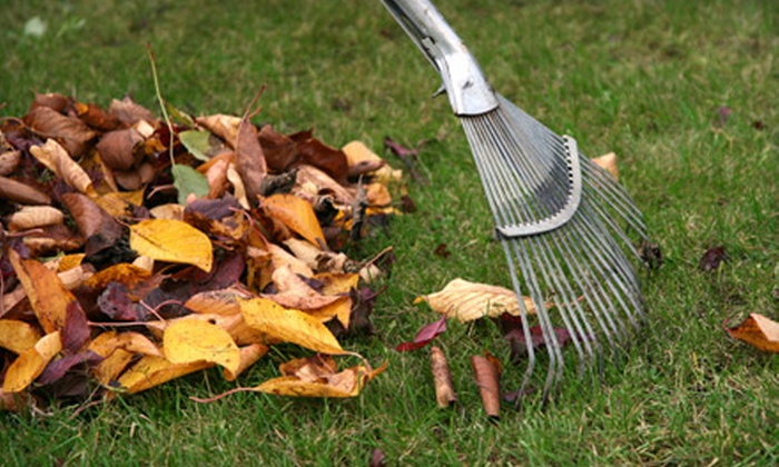 Artistic Outdoor Services - Farmington: $49 for Five Hours of Outdoor Fall Cleanup from Artistic Outdoor Services ($150 Value)