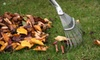 Artistic Outdoor Services: $49 for Five Hours of Outdoor Fall Cleanup from Artistic Outdoor Services ($150 Value)
