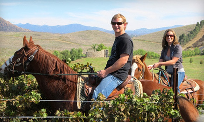 Wine Country Trails by Horseback - Temecula Wine Country : $150 for Wine Tasting, Lunch, and Horseback Ride for Two at Wine Country Trails by Horseback in Temecula ($330 Value)