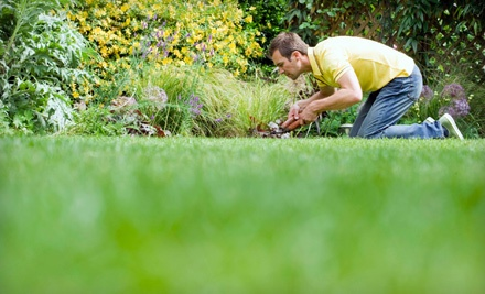 Pre-Spring Weed-Spraying Treatment for Yards up to 1/4 Acre (a $60 value) - TurfWorks in
