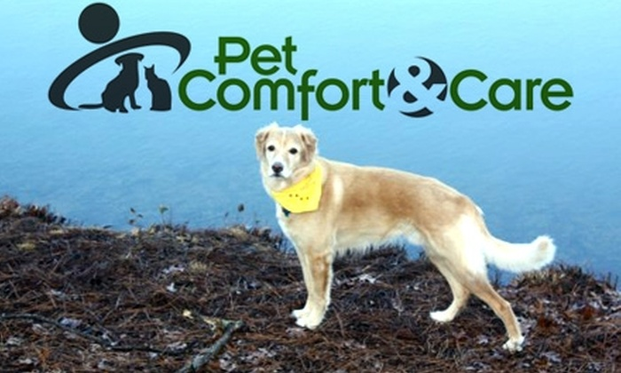 Pet Comfort and Care - Raleigh / Durham: $30 for Four At-Home Pet-Sitting Sessions from Pet Comfort and Care (Up to $97.90 Value)