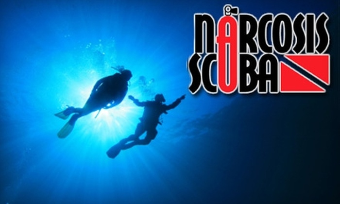 Narcosis Scuba - Tampa Bay Area: Scuba Diving Experiences from Narcosis Scuba in Tarpon Springs (Up to $600 Value). Choose from Three Options.