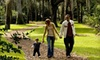 Bok Tower Gardens - Mountain Lake: $8 for Admission for Two to Bok Tower Gardens (Up to $20 Value)