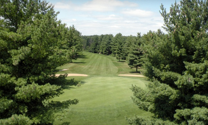 Pine View Golf Course - Ypsilanti: $35 for Golf Outing for Two at Pine View Golf Course in Ypsilanti (Up to $74 Value)