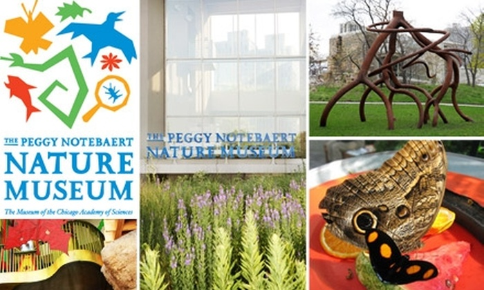 Peggy Notebaert Nature Museum - Lincoln Park: $21 for Individual Membership to Peggy Notebaert Nature Museum ($42 Value)