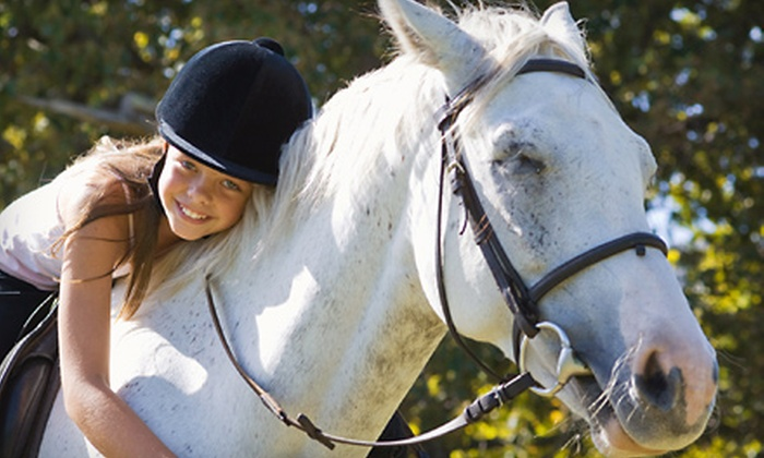 Lachlan Farm - Leeds: Two or Four Horseback-Riding Lessons
