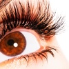 Up to 69% Off Eyelash Extensions