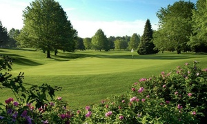 Willow Creek Golf Course: 9-Hole Round of Golf for One, Two, or Four, Plus Cart Rental at Willow Creek Golf Course (Up to 52% Off)