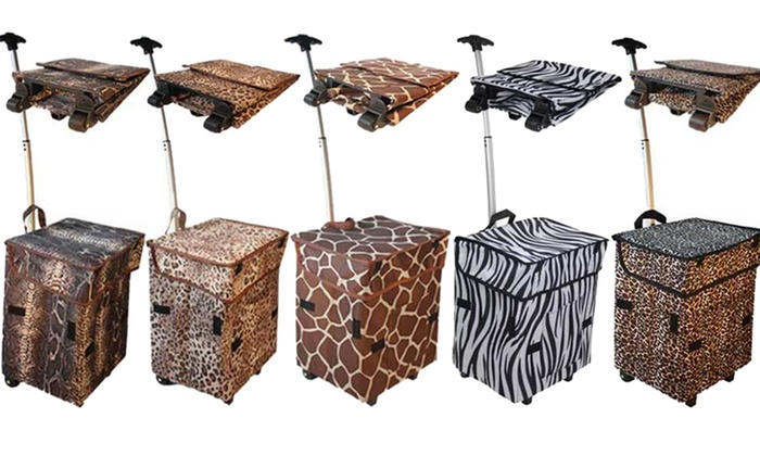 Smart Carts Gone Wild | Groupon Goods