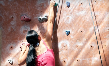 1-Month Membership with 60-Minute Beginner Lesson  - Peaks Indoor Rock Climbing in St. Catharines