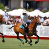 $10 for Polo-Match Outing for Two