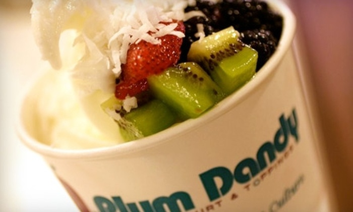 Plum Dandy - Saratoga Springs: $4 for $8 Worth of Frozen Yogurt at Plum Dandy in Saratoga Springs