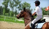 Fairbanks Riding - North City: $59 for Two 30-Minute Individual Horseback-Riding Lessons at Fairbanks Riding in Del Mar ($130 Value)