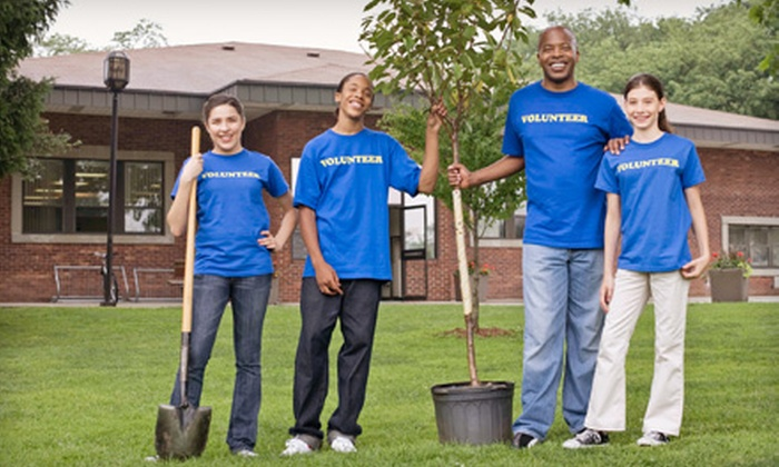 Arbor Day Foundation - St Louis: If 35 People Donate $10, Then Arbor Day Foundation Can Plant 350 Trees to Help Rebuild Joplin