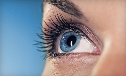 Half Set of Eyelash Extensions (a $100 value) - The Glo Studio in Marina del Rey