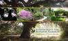Rancho Santa Ana Botanic Garden - Claremont: $30 for One Yearlong Family Membership to Rancho Santa Ana Botanic Garden ($60 Value)