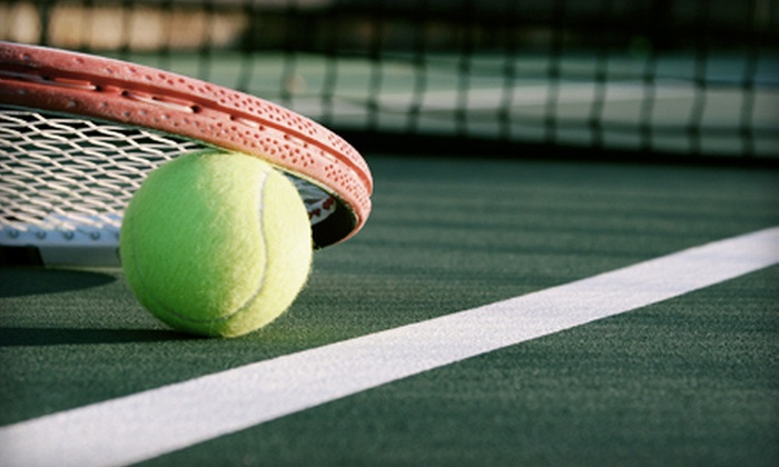 Mentor Heisley Racquet and Fitness Club - Mentor: $45 for Adult Group Beginner Tennis Lessons with Court Time at Mentor Heisley Racquet and Fitness Club ($92 Value)