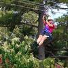 Up to 60% Off Zipline Adventures in Nacogdoches