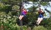 *DUPE* Zip Nac - Nacogdoches: Zipline Adventure for 2 or 4, or Zipline Party for Up to 10 at Zip Nac in Nacogdoches (Up to 60% Off)