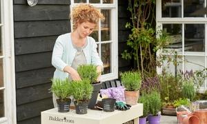 Bakker - Fiori e piante a domicilio: Buono da 25 o 40 € per l'acquisto di fiori e piante sul sito di giardinaggio Bakker.com