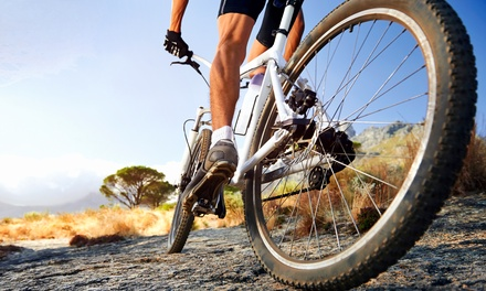 Bike Parts & Accessories or Full-Day Bike Rental at Spokesman Bicycles (Up to 52% Off). Three Options Available.