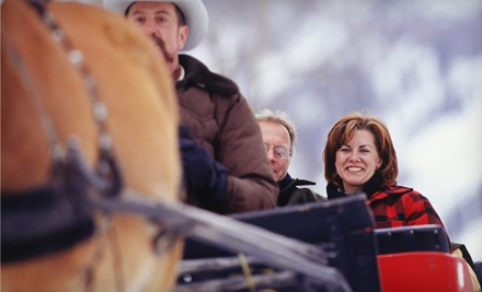 30-Minute Sleigh Ride for up to 3 People (a $60 value) - Hilltop Ranch Inc in Jamesville