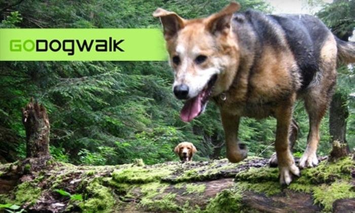 GoDogWalk - Mt. Pleasant: $10 for $20 Worth of Dog Walking, Boarding, or Daycare at GoDogWalk