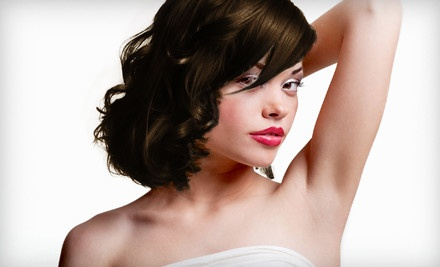 6 Laser Hair-Removal Treatments for a Small Area - Alora Ambiance Spa in Boonton