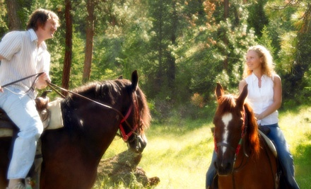 Horseback Riding Package for 1 (a $113 value) - Sleepy Sheep Ranch in Whitewright