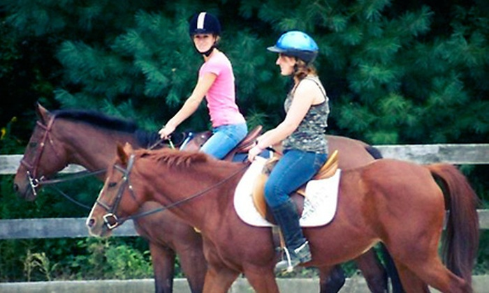 Edinger Farm - Rehoboth: Three or Five Private Horseback Lessons or Five Days of Summer Camp at Edinger Farm in Rehoboth (Up to 55% Off)