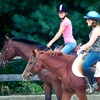 Up to 55% Off Horseback Riding in Rehoboth