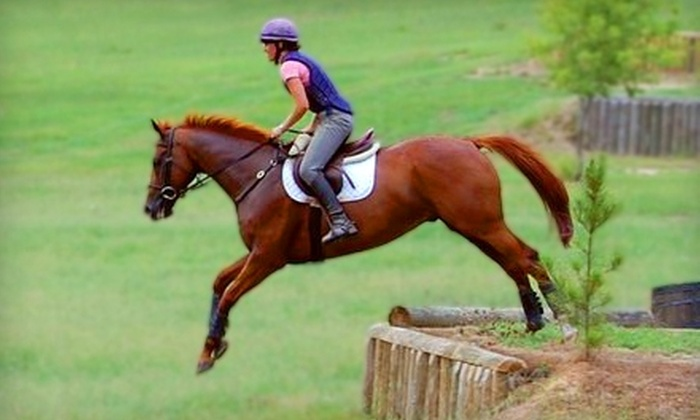 ASH Stables - New Ellenton: $26 for Private One-Hour Horse-Riding Lesson at ASH Stables in Aiken ($60 Value)