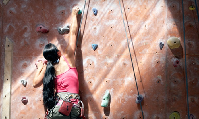 On the Edge Rock Climbing Gym - Industrial Plaza: $12 for an Introductory Rock-Climbing Package at On The Edge Rock Climbing Gym in Melbourne ($25 Value)