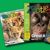 Zoobooks, Zootles, or Zoobies Magazine