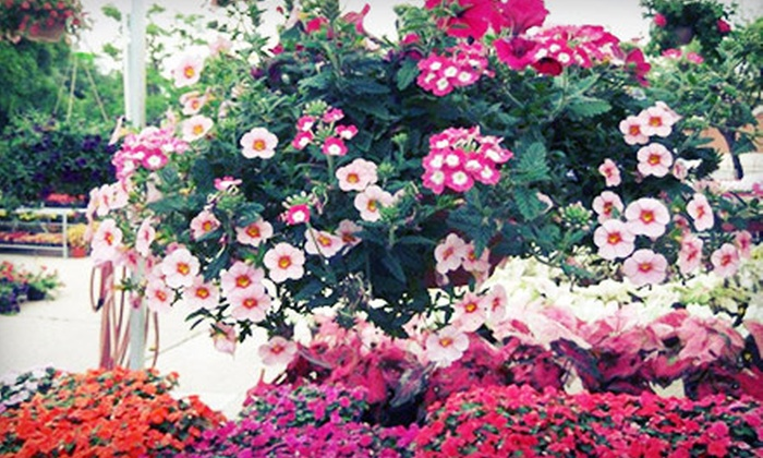 Under The Sun Garden Center - Hillcrest Manor: $15 for $30 Worth of Plants, Gardening Supplies, and Home Décor at Under the Sun Garden Center