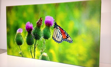 Custom Framing or Printing at Main Street Frame Shop (Up to 60% Off)