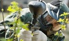Paintball USA - Agua Dulce: $20 for a Paintball Package at Paintball USA in Santa Clarita (Up to $60 Value)