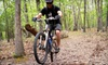 Shenandoah Trail Cruisers - Luray: Half- or Full-Day Bike and Beer Adventure from Shenandoah Trail Cruisers in Luray (Up to 72% Off)