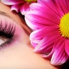 60% Off Eyelash Extensions in Coral Springs