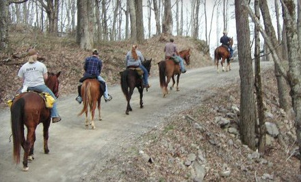 One-Hour Horseback Trail Ride for Two (a $50 value) - Ride a Rescue at Winterfrost Farm in Riner