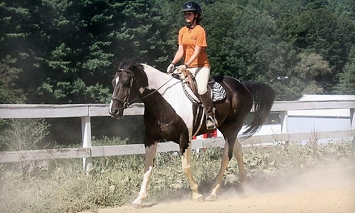 Mountain Dell Equestrian - Waynesville: $15 for a Private Riding Lesson at Mountain Dell Equestrian ($35 Value)