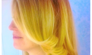 Dj Stylez: $35 for $60 Worth of Blow-Drying Services — Hair-I-Go: DJStylez