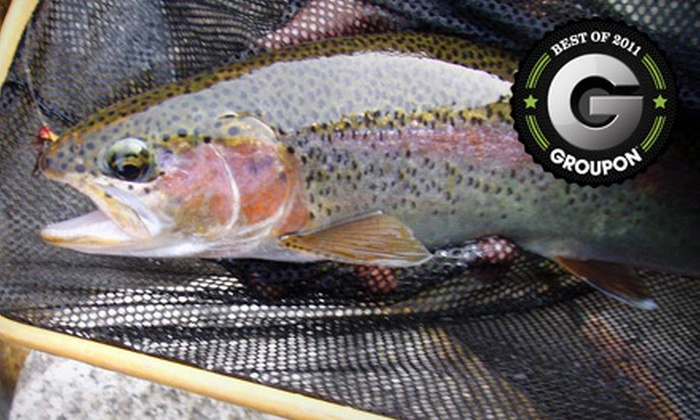 Sierra Fly Fisher Tours - Central Fresno: $199 for a Fly-Fishing Outing for Up to Two from Sierra Fly Fisher Tours ($400 Value)