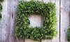 CELEBRATE-Lavish Arrangements - Port Moody: 20-Inch Square Boxwood Wreath or $25 for $50 Worth of Gift Baskets at Lavish Floral & Gifts in Port Moody (Half Off)