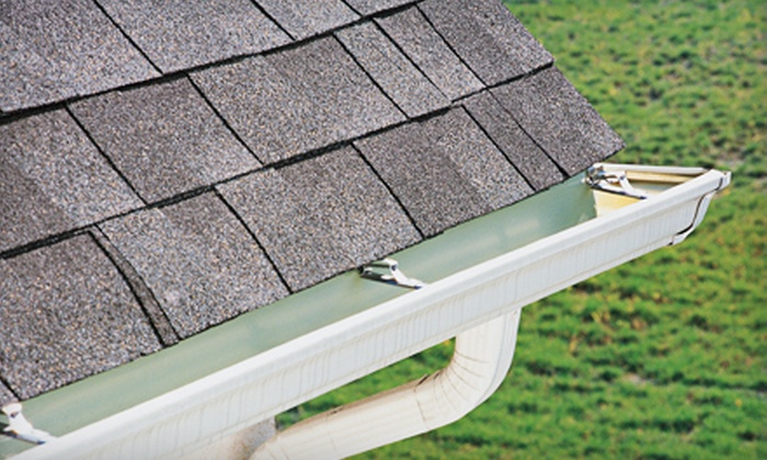 Best Choice Alternative Heating - Streamwood: Gutter or Chimney Cleaning from Best Choice Alternative Heating in Streamwood (Up to 61% Off)