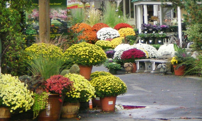Campbell & Ferrara Outdoor Living - Annandale: $15 for $30 Worth of Plants, Flowers, and Gardening Accessories at Campbell & Ferrara Outdoor Living in Alexandria, VA